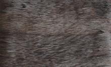 Abstract Macro Background Dark Brown Fur