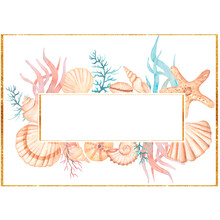 Watercolor Sea Shells Frame Clip Art. Coral  Flower Bouquet. Ocean Coral Wreath, Sea Reef Frame, Summer Beach Arrangements Illustration.