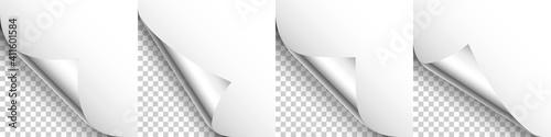 Vászonkép Set of silver paper curls