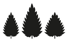 Three Silhouettes Of A Nettle Leaf On A White Background