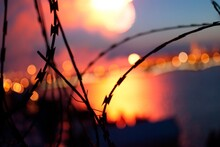 Close-up Of Razor Wire Against Sky During Sunset
