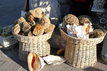 High Angle View Of Corals And Seashells In Baskets At Street Market