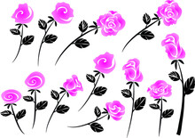 Vector Drawing Purple Rose Background Design