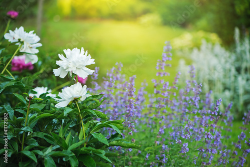 Canvas english cottage style garden