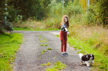 Happy Kid Girl Walking With Her Cavalier King Charles Spaniel Dog On Summer Country Road. Training Her Puppy And Having Fun.