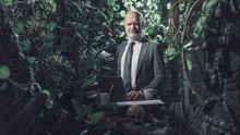 Confident Businessman Working In The Jungle