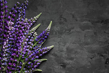 A Bunch Of Purple Lupins (lupinus) With Green Leaves On Dark Gray Plaster Background. Top View, Flat Lay, Product Background. Copy Space, Empty Space For Text