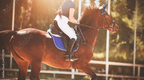 Fotografija A fast strong bay racehorse with a rider in the saddle gallops through the arena, illuminated by the sunlight on a summer day