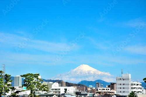 Photo 富士山と静岡市がい