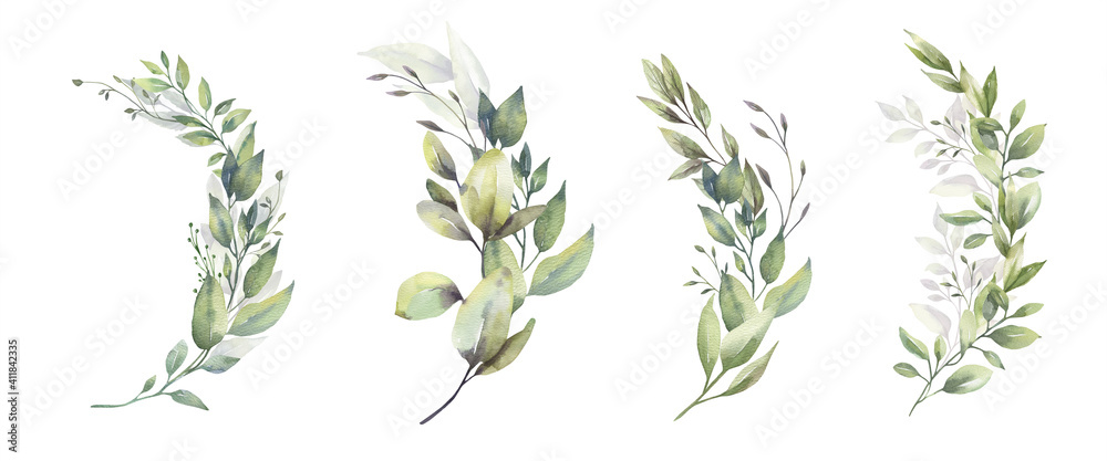 Fototapeta Watercolor floral illustration set - green leaf branches bouquets collection, for wedding stationary, greetings, wallpapers, fashion, background. Eucalyptus, olive, green leaves, etc. High quality