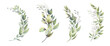 Watercolor floral illustration set - green leaf branches bouquets collection, for wedding stationary, greetings, wallpapers, fashion, background. Eucalyptus, olive, green leaves, etc. High quality