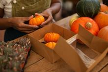 Woman Boxing Bright Orange Pumpkins In Shop