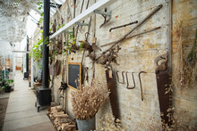 Dried Flowers Plants And Antique Tools On Garden Shop Wall