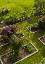 Aerial View Couple In Lush Summer Garden With Raised Beds