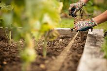 Woman Fastening Twine Around Raised Garden Bed