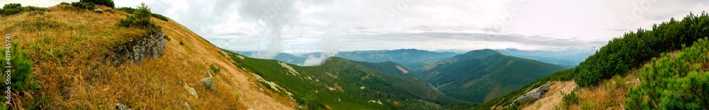 Fototapeta beautiful panorama with alpine pine and mountains under blue sky