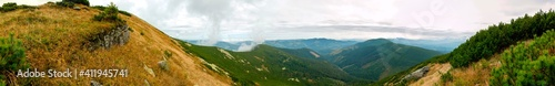 Fotografie, Obraz beautiful panorama with alpine pine and mountains under blue sky