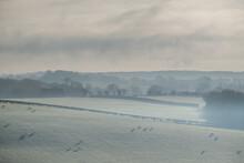 Frosty Morning In Rural Countryside, Warwickshire, England, UK