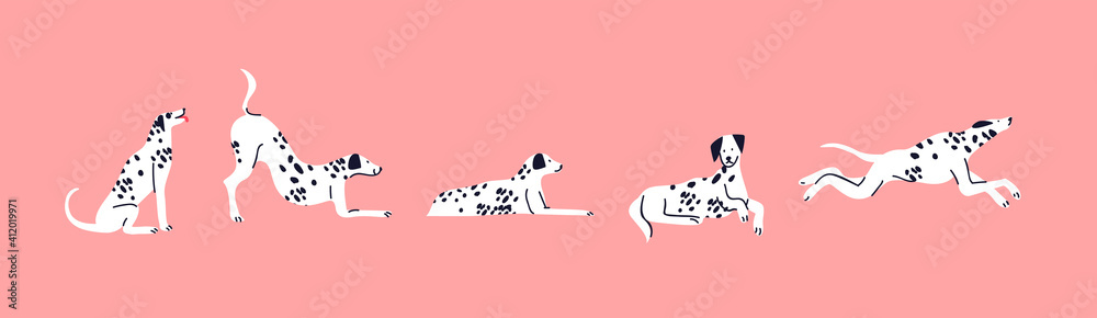 Fototapeta Dalmatian dog cartoon set cute pet isolated