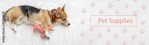 Obraz na plátne Cute dog with toy lying on bed with text Pet supplies