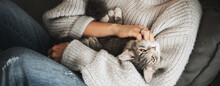 Beautiful Gray Fluffy Cat Sitting On The Arms Of A Woman In A Warm Cozy Sweater, Top View Banner Format