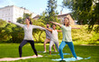 fitness, sport and healthy lifestyle concept - group of happy people doing yoga at summer park