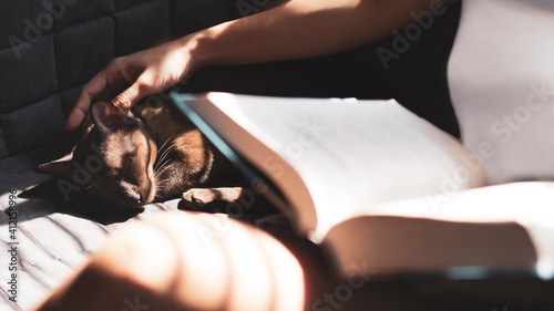 Foto Beautiful woman sit on sofa, read book and stroke brown cat with fingers in calm, peaceful and soothing morning with sunlight through window