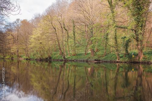 Fotografia A calm reflection on the Cammo Estate and River Almond walk at Cramond Brig in Edinburgh, Scotland