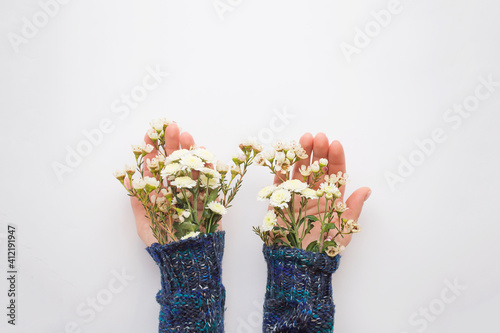 Women's hands in a sweater from under which flowers are on the palms. The concept of the arrival of spring.