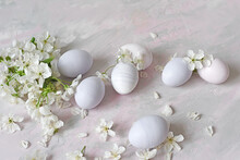 Painted Eggs And White Flowers Of A Cherry Tree On A Light Background. Easter Still Life In Delicate Colors.
