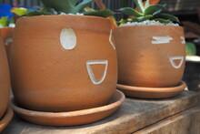 Emotion Pot And Cactus
