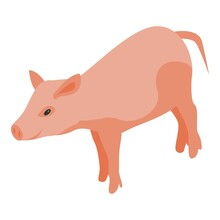 Farm Pig Icon. Isometric Of Farm Pig Vector Icon For Web Design Isolated On White Background