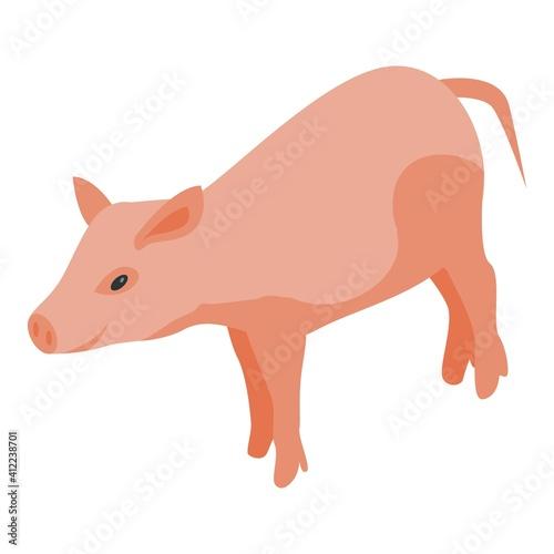 Canvas Farm pig icon