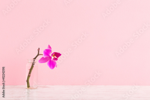 Fresh purple orchid in glass vase on wooden table at light pink wall. Pastel color. Empty place for inspirational, emotional, sentimental text, lovely quote or positive sayings. Front view. Closeup.