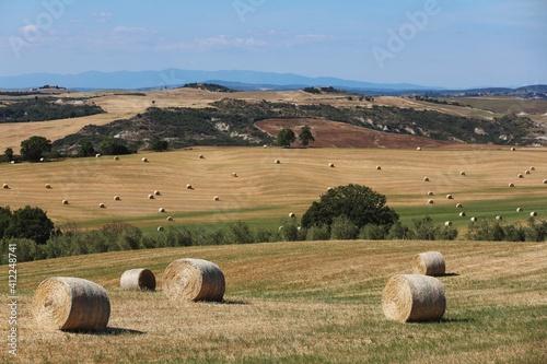 Tablou Canvas Hay Bales On Field Against Sky