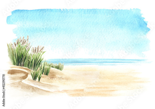 Fototapeta Coastal dune, sea grass, beach on the background of the sea with copy space. Hand drawn watercolor illustration,  isolated on white background obraz