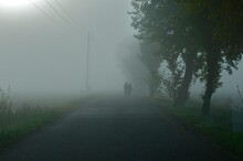 People On Road During Foggy Weather