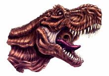 Tyrannosaurus Rex Illustration (bust, Head)