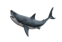 Great White Shark Attacking. 3D Render Isolated On White.