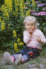 Little Girl With Splotchy Shirt Eating Cherry Tomatos