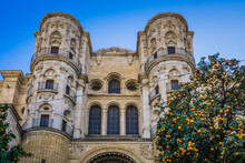 The Lateral Facade Of The Catedral De La Encarnacion In Malaga, Andalucia (Spain), With Orange Tree In The Foreground