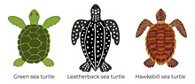 Vector Set Of Critically Endangered Sea Turtles. Three Colored Icons Of The Hawksbill Sea Turtle, Green Sea Turtle And Leatherback Sea Turtle