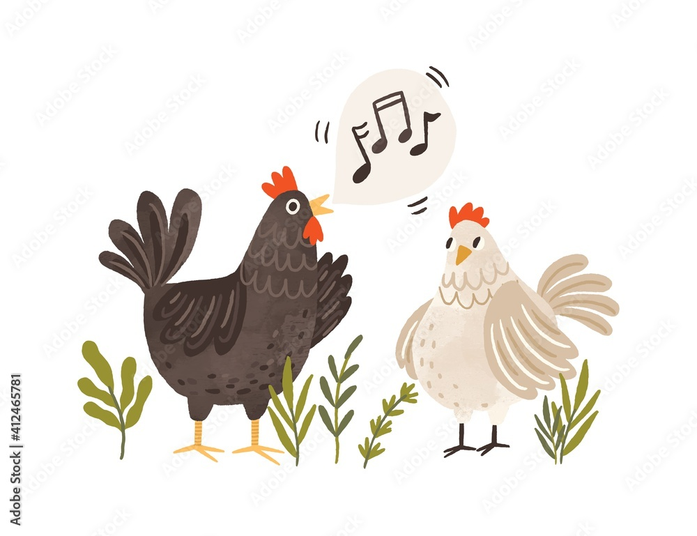 Fototapeta Rooster singing songs for hen. Cute and funny chicken listening to crowing. Colorful flat textured vector illustration isolated on white background