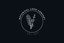 Minimal Feminine Modern Botanical Floral Organic Natural Abstract Thyme And Rosemary Classical Floral Logo Design