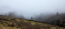 A Gritty Winter Mist Covers A Woodland Sided Valley On High Moorland At 900ft