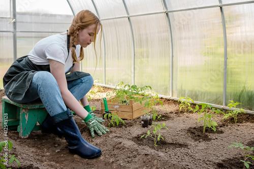 Valokuvatapetti Agriculture, gardening