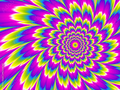 Fotografija Colorful rainbow flower blossom. Motion illusion.