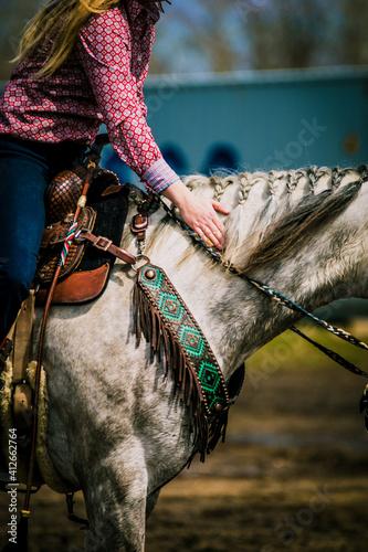 Valokuva Horse