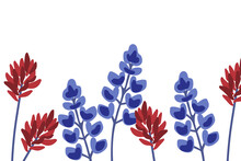 Indian Paintbrush And Bluebonnet