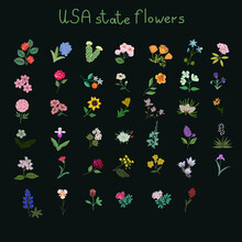 USA State Flowers